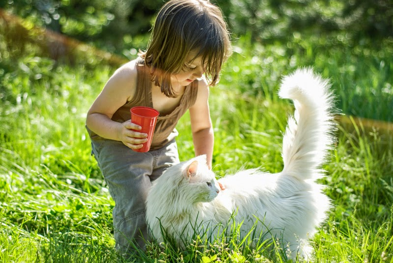How Can Children Talk to Animals?