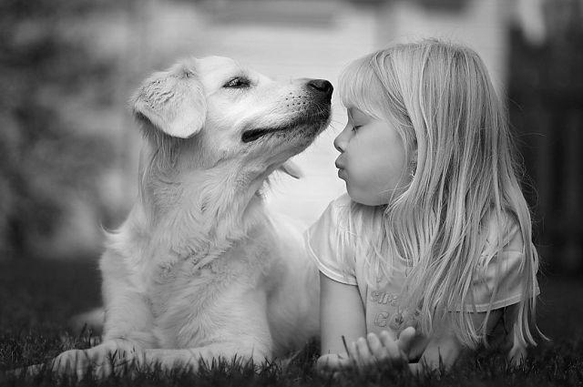Animal Communication for Children Lesson 2