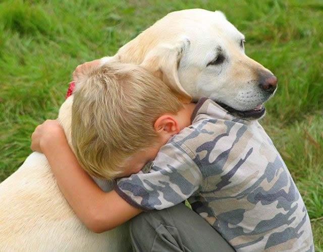 Animal Communication for Children Lesson 3